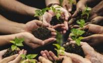 Progetto Farmid: disabilità mentale e agricoltura sociale
